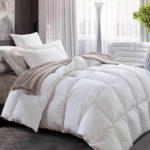 6 Best Cotton Comforter Sets